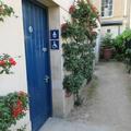 Botanic Garden - Doors - (1 of 4)
