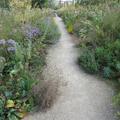 Botanic Garden - Gardens borders and outdoor areas - (3 of 5)