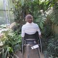Botanic Garden - Gardens, Glasshouses - (4 of 5) - Glasshouse