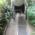 Botanic Garden - Gardens, Glasshouses - (5 of 5) - Lily House