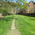 Kellogg College - Gardens  - (3 of 4)