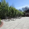 Kellogg College - Gardens - (4 of 4)