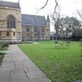 University College - Gardens - (1 of 2)
